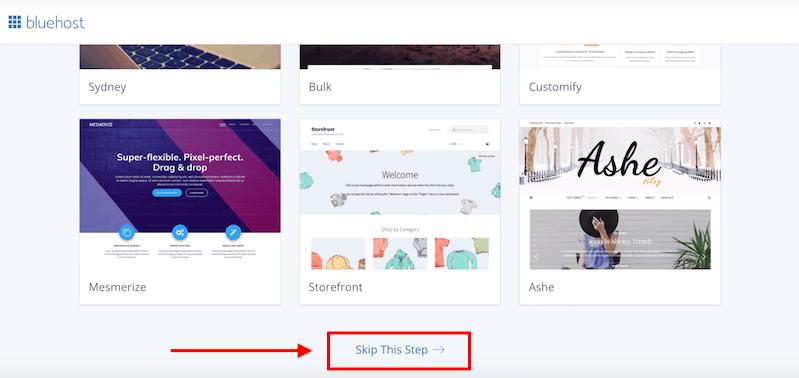 How to Start a Blog Skip a Theme